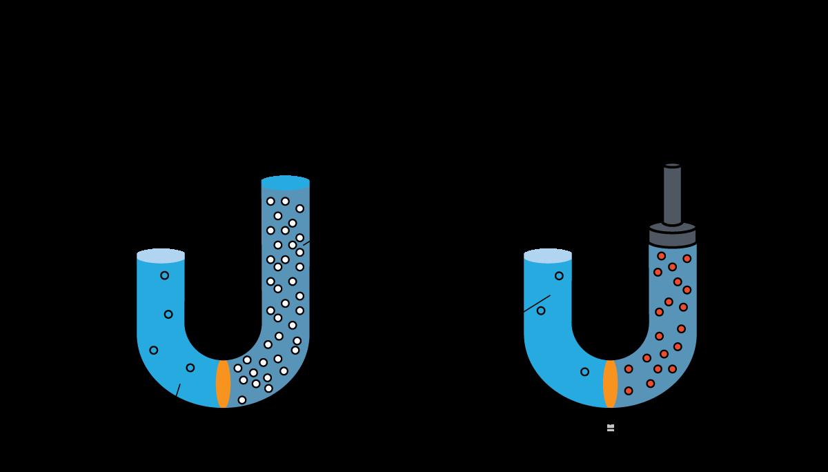 Ósmosis vs Ósmosis Inversa