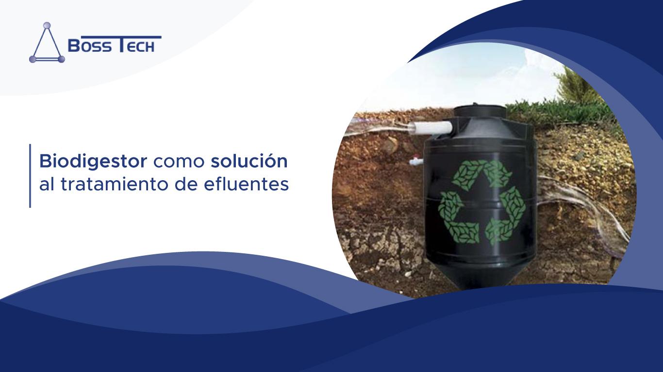 Biodigestor Solucion Tratamiento Efluentes