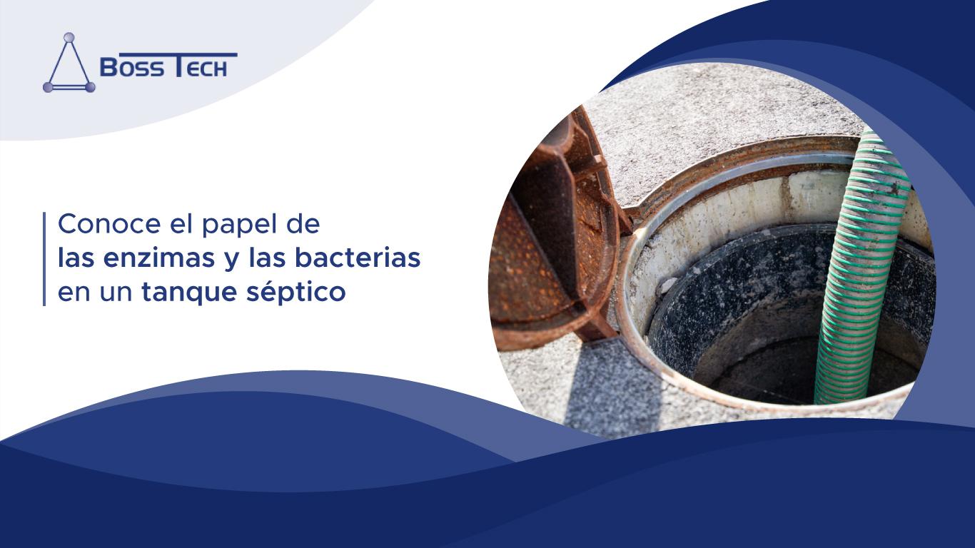 Conoce El Papel De Las Enzimas Y Las Bacterias En Un Tanque Séptico